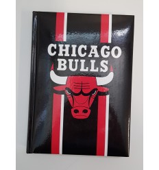 Diario medium 12 mesi NBA 4 modelli 58454 Panini-Futurartshop.com